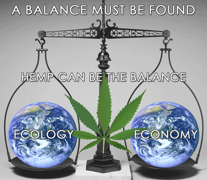We must balance ecology and economy